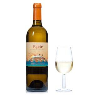 Kabir 2014 0,75