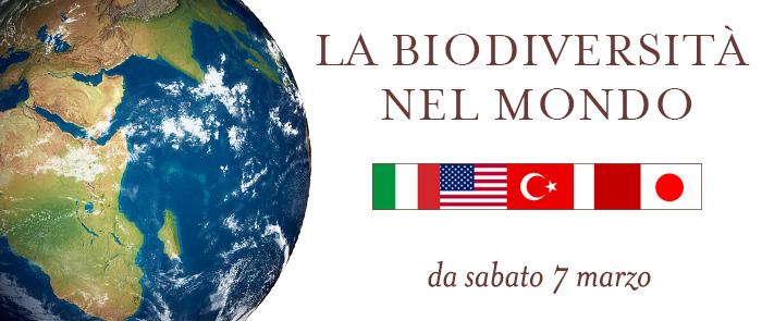 La biodiversità nel mondo