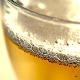 Corso di degustazione: la birra