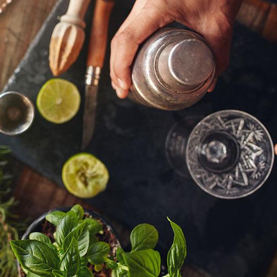 Gin Tonic fai da te!