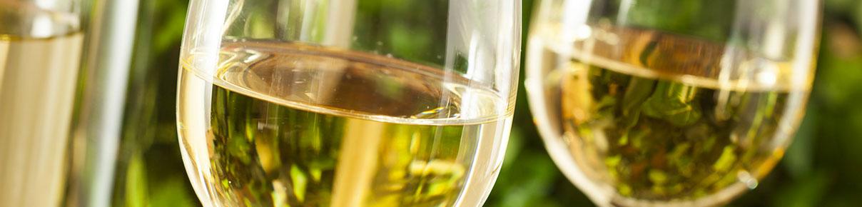 Vini Bianchi e Bollicine