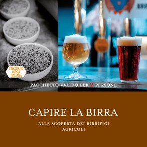 Capire la Birra