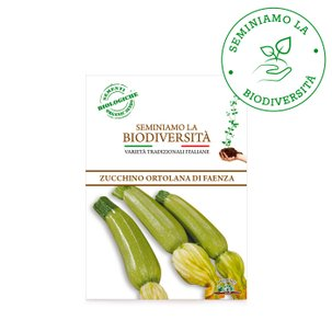 Semi Bio Zucchino Faenza 3gr