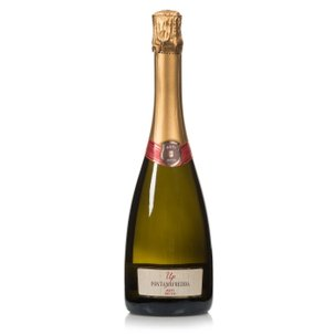 Asti DOCG Secco Up 0,75l
