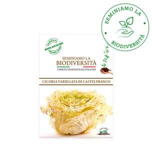 Semi Bio Cicoria Castelfranco r 2g