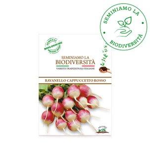 Semi Bio Ravanello Cappuccetto r 3g