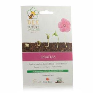Semi Bio Lavatera