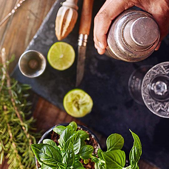 Gin&Tonica