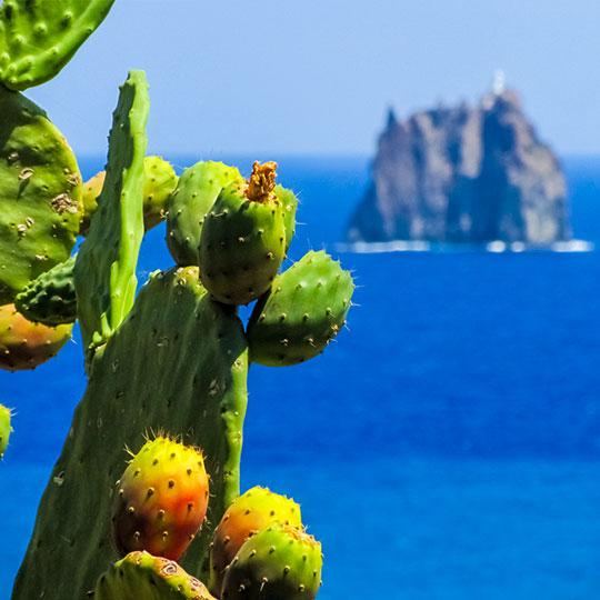 I sapori del sud Italia